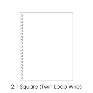 2:1 Twin Loop Wire